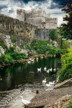 Cahir Castle in County Tipperary was designed as a defensive fortress, which appears to grow from the actual rock on which it stands!