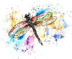 Dragonfly print dragonfly art dragonfly by LisaWhitehouseArt