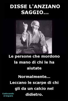 Immagini divertenti frecciatine disse l'anziano saggio Quotes Thoughts, Life Quotes, Italian Memes, Good Sentences, Intelligent People, Strong Words, Sarcasm Humor, Funny Moments, Love Of My Life
