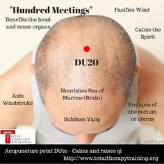 Acupressure Therapy TCM: Bai Hui, The 100 Meetings Points Acupressure Therapy, Acupressure Treatment, Cupping Therapy, Massage Therapy, Craniosacral Therapy, Acupuncture Points, Acupressure Points, Holistic Medicine, Holistic Healing