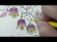 World Of Flowers Coloring Book Tutorial Flower Wreath Bright Colors Prismacolor Lisa Brando Coloring Blue Bell Flowers I'm just in a really weird mood, proba. Coloring Tips, Adult Coloring Pages, Coloring Books, Colouring, Blue Bell Flowers, Colorful Flowers, Coloring Tutorial, Cheer Me Up, Prismacolor