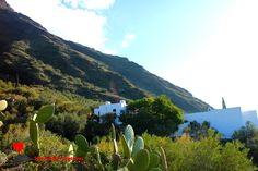 #Natural #environment of #Ginostra.