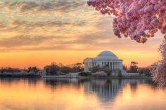 Washington DC Photography - Andrew Rhodes Photography