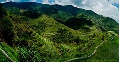 The mesmerizing rice paddies of Banaue. | 33 Breathtaking Photos That Prove The Philippines Is Paradise