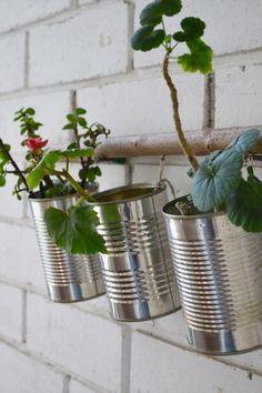 communities.dmcihomes.com wp-content uploads 2014 01 011-tin-can-planters.jpg