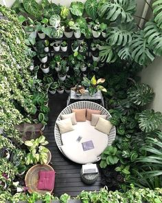 Back Gardens, Small Gardens, Decorating Bookshelves, The Best Is Yet To Come, Green Landscape, Home Decor Kitchen, Inspired Homes, Plant Decor, Decoration