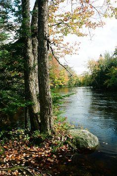 Mersey River, Kejimkujik national Park, Nova Scotia, Canada