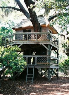 The world's 15 most Stunning Tree Houses. | Most Beautiful Pages
