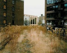 Joel Sternfeld, Looking South at 27th Street, September 2000 from Walking the High Line, 2002 Most cities have their forgotten spaces, but it still somehow surprises me that the High Line, the elev…