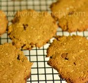 Fast Paleo » Chocolate Chip Coconut Pumpkin Cookies! - Paleo Recipe Sharing Site