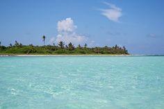 Punta Allen, Mexico - Wolpy