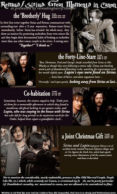 Remus/Sirius Relationship. Personally, I don't think so, but I can see where people might...
