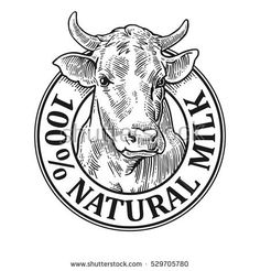Hand drawn in a graphic style. Vintage vector engraving illustration for label, poster, logotype. Isolated on white background Cow Logo, Farm Logo, Carnicerias Ideas, Engraving Illustration, Tea Illustration, Cow Head, Sketch Design, Machine Embroidery Designs, How To Draw Hands