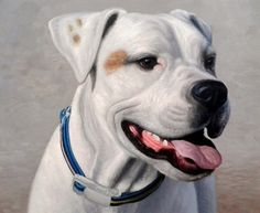 PaintYourLife.com - 100% handmade custom pet portraits from photos. All our pet paintings, either dog portraits or cat portraits are created by professional artists. The perfect gift for pet lovers!