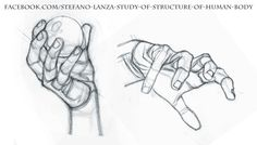 https://www.facebook.com/Stefano-Lanza-Study-of-structure-of-human-body-1479159998770051/ #anatomy #draw #human anatomy #pencil #drawing