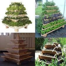 Food pyramid for a space - saving herb and veggie garden Garden Beds, Home And Garden, Dream Garden, Garden Planters, Micro Garden, Balcony Gardening, Smart Garden, Wood Planters, Easy Garden