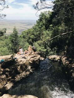 Hogsback, a small village situated on the top of the Amathole mountains. A birders paradise & a hikers dream, here are 5 things to do in this mystical town. Parrot Image, Provinces Of South Africa, Rock Pools, Big Tree, Day Hike, Africa Travel, Swallow, Middle Earth, Hiking Trails