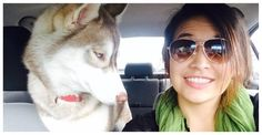 32 Animals Who Don't Approve Of Your Selfie Addiction