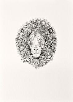 Leo by Nathan Ferlazzo
