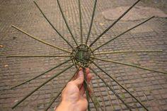 Weaving a basic basket Paper Basket Weaving, Rope Basket, Bramble, Willow Tree, Baskets, Ideas, Hampers, Basket, Thoughts