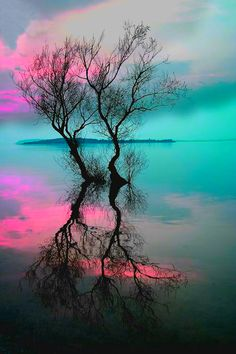pink ♥ blue (teal) Beautiful Scenery