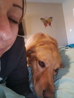 Pets, Kids, Pet blog, Mommy blog,