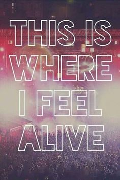 This is where I feel alive | concerts | live music   love |