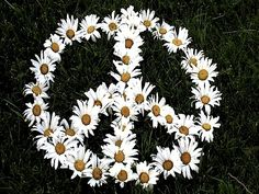 The same flower being repeated over and over creates harmony, and the grass (green) doesn't overwhelm the flowers (white) plus i couldnt resist using a peace sign for harmony ;)