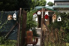 Birdhouses showroom!!!