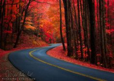 """""""A Highway To Dreams"""" - Great Smoky Mountains National Park, Tennessee / North Carolina, USA Beautiful World, Beautiful Places, Amazing Places, Simply Beautiful, Places To Travel, Places To Visit, Mountain Images, Great Smoky Mountains, Smokey Mountain"""