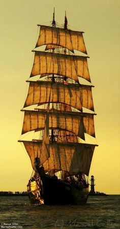 "Pirates?  As in 'Arg'?!  (quote from ""Six Days Seven Nights"" with Harrison Ford & Anne Heche....funny movie!)  Awesome ship!"