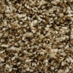 Truly Soft II - Color Southern Road 12 ft. Carpet