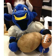 It looks like Victor E. Bull is ready for the Famous Idaho Potato Bowl! Thanks for sharing on Twitter, Lori DeFranco! #BowlingBulls #HornsUp #uBuffalo Join us at: http://www.buffalo.edu/goubbulls.html