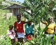 A Trees for the Future family in Haiti.