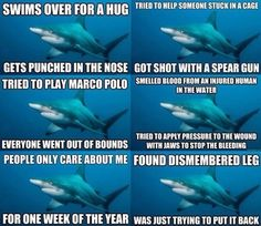 shark jokes on pinterest shark jokes funny sharks and