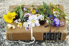 wildflower samples when from your walk