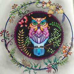 Corujinha colorida