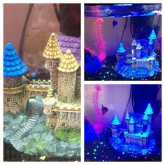 Betta & Glofish Tank with Castle Setup