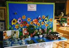 A fantastic hands on working display on Flowers and Seeds - River House Reception and Year 1