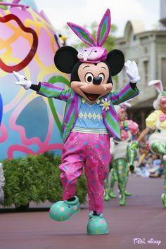 ミッキー、ミッキーの着ぐるみならhttp://www.mascotshows.jp/product/mickey-mouse-mascot-adult-costume.html