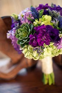 Succulents with shades of blues or purples