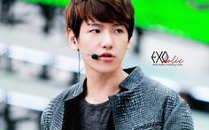 12.06.08 Music Bank at Jeonju (Cr: EXO-holic: exo-holic.tistory.com)