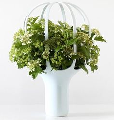 A vase with a top that loops over the flowers to frame them.