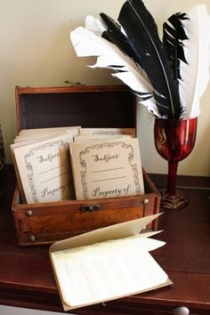 Harry Potter Party -feathers