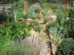 Small red brick walls in allotment or kitchen garden.   (PC190014 by LindaB, via Flickr)