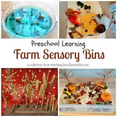 preschool farm theme sensory bins