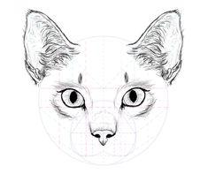 catdrawing_7-7_ears_done