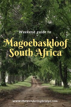 A weekend guide to Magoebaskloof in Limpopo, South Africa. Including ziplining adventures, accommodation and restaurants.