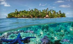 What are the best diving spots in Fiji? What resorts in Fiji are close to the best diving spots? Children friendly diving holidays for families in Fiji. Oh The Places You'll Go, Places To Travel, Places To Visit, Travel Destinations, Dream Vacations, Vacation Spots, Vacation Places, Fiji Travel, Thinking Day
