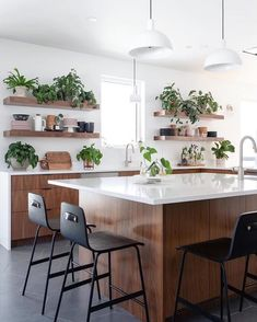 "Schoolhouse (@schoolhouse) posted on Instagram: ""A kitchen greenhouse, via @amypigliacampo + @nataliepigliacampo #schoolhouseliving"" • Mar 15, 2020 at 3:32pm UTC Bellisima, Cool Kitchens, Kitchen Decor, Homeschool, Instagram, Table, Furniture, 1, Home Decor"